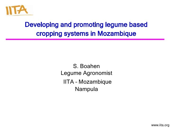 Developing and promoting legume based   cropping systems in Mozambique              S. Boahen          Legume Agronomist  ...