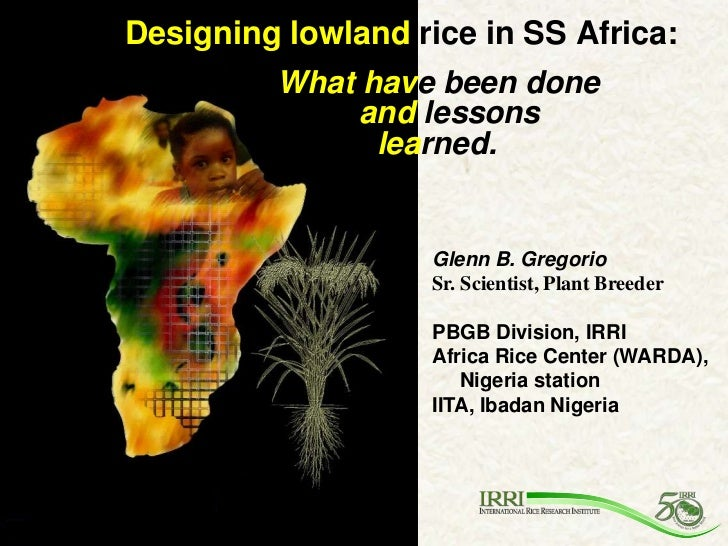 Designing lowland rice in SS Africa:         What have been done              and lessons               learned.          ...