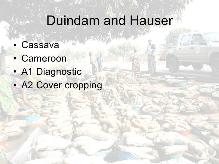 Duindam and Hauser <ul><li>Cassava </li></ul><ul><li>Cameroon </li></ul><ul><li>A1 Diagnostic </li></ul><ul><li>A2 Cover c...