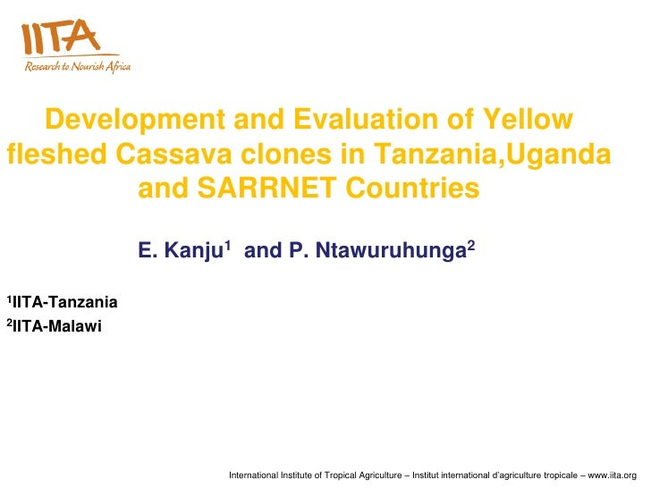 Development and Evaluation of Yellowfleshed Cassava clones in Tanzania,Uganda         and SARRNET Countries               ...