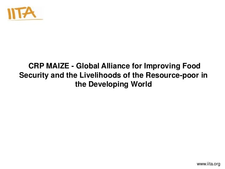 CRP MAIZE - Global Alliance for Improving Food Security and the Livelihoods of the Resource-poor in the Developing World