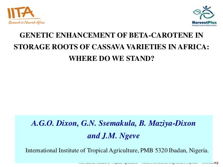 GENETIC ENHANCEMENT OF BETA-CAROTENE INSTORAGE ROOTS OF CASSAVA VARIETIES IN AFRICA:                   WHERE DO WE STAND? ...
