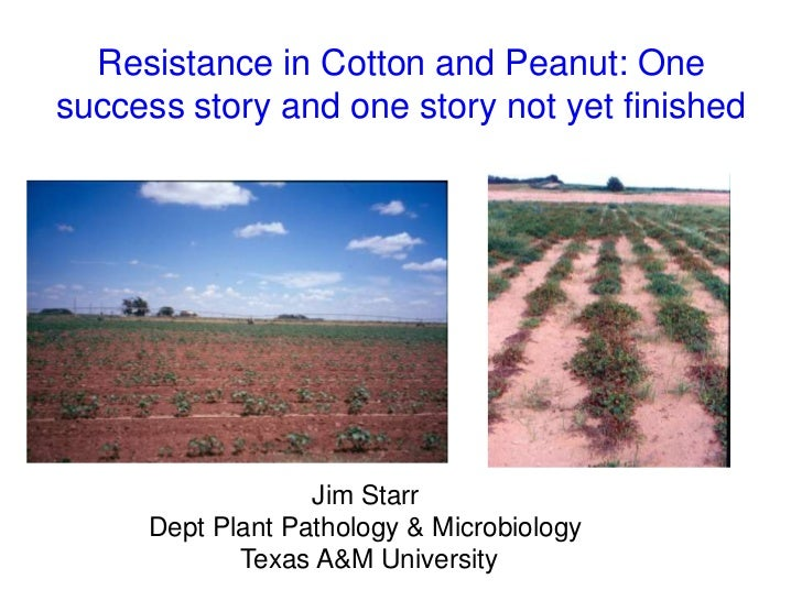 Resistance in Cotton and Peanut: Onesuccess story and one story not yet finished                  Jim Starr     Dept Plant...
