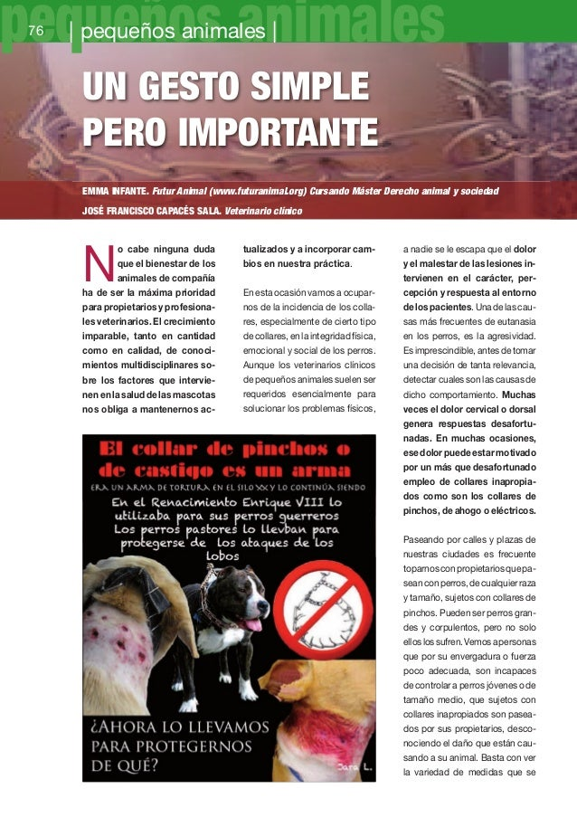 76-79 Gesto Collar pinchos_Maquetación 1 11/12/12 17:50 Página 76  pequeños animales 76  | pequeños animales |  Un GEsto s...
