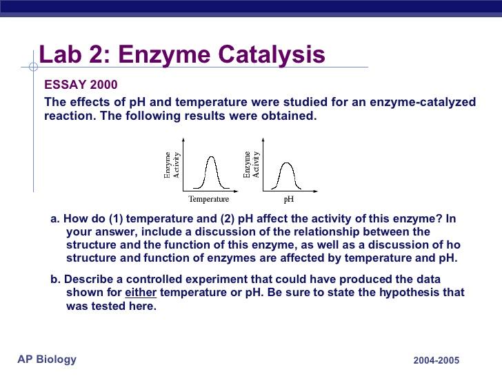 enzyme catalysis essay