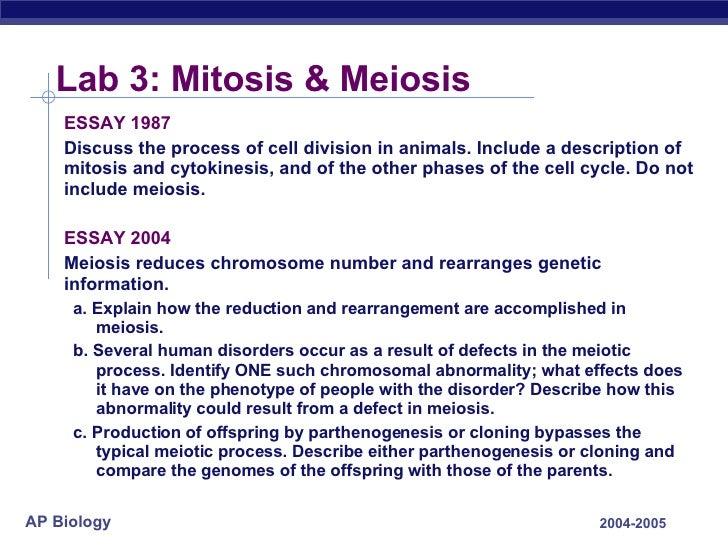 Mitosis essay