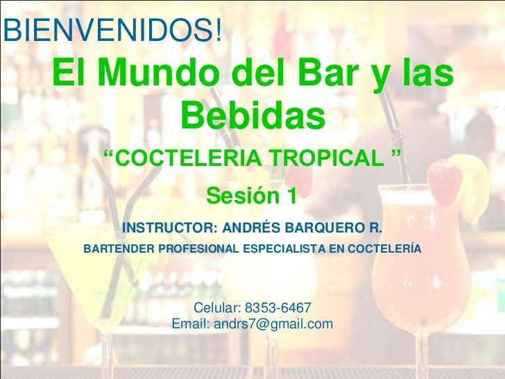 ACAB Professionals- Presentacion PPT general - BAR, BEBIDAS Y MIX