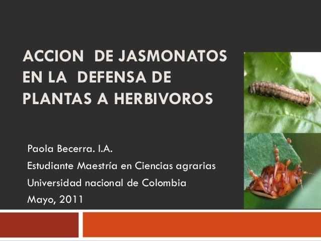ACCION DE JASMONATOSEN LA DEFENSA DEPLANTAS A HERBIVOROSPaola Becerra. I.A.Estudiante Maestría en Ciencias agrariasUnivers...