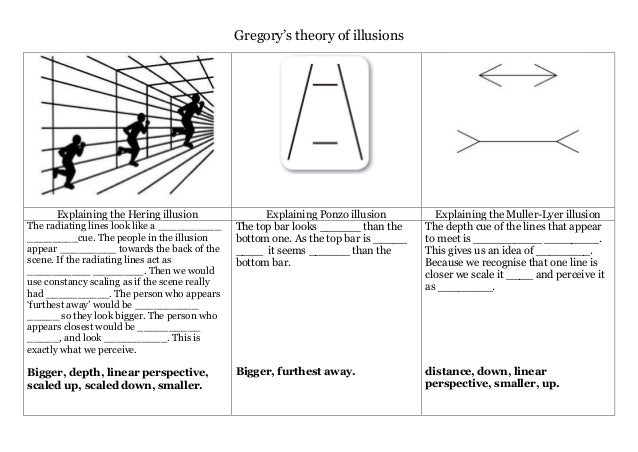 Gregory's theory of illusions Explaining the Hering illusion Explaining Ponzo illusion Explaining the Muller-Lyer illusion...