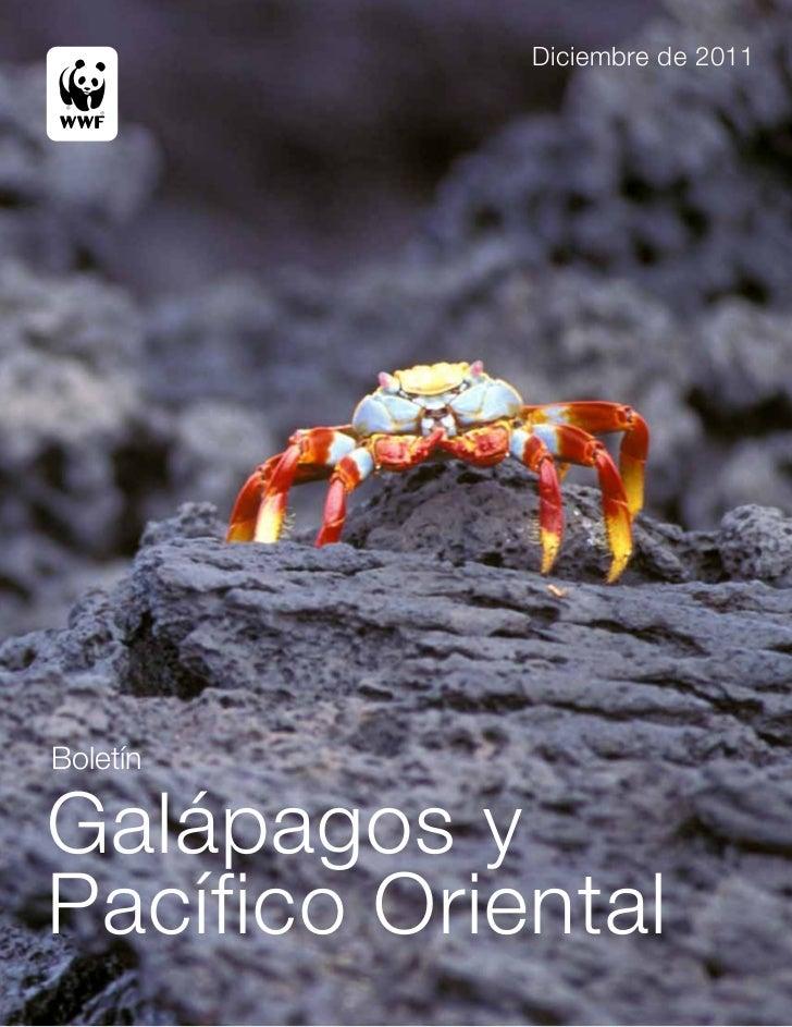 Diciembre de 2011BoletínGalápagos yPacífico Oriental