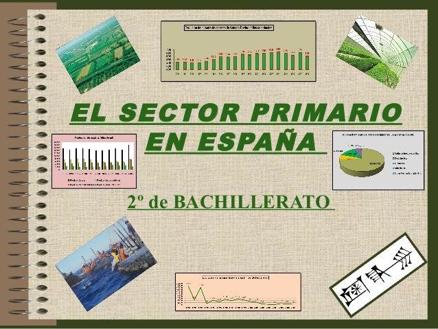7. El  sector  primario  en  España