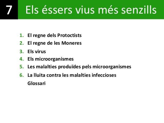 Els éssers vius més senzills 1. El regne dels Protoctists 4. Els microorganismes 5. Les malalties produïdes pels microorga...