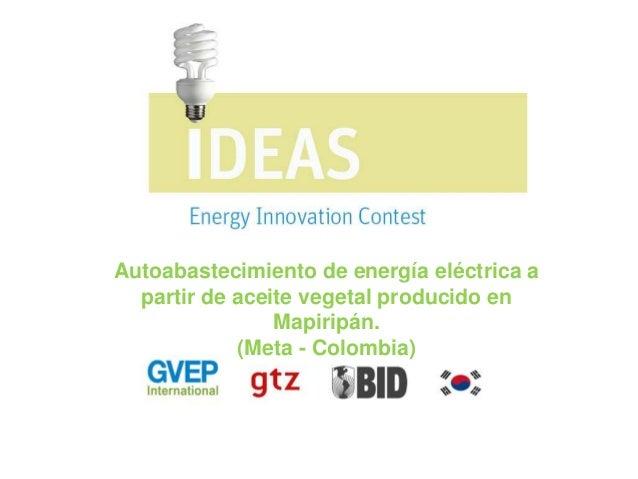 Autoabastecimiento de energía eléctrica a partir de aceite vegetal producido en Mapiripán. (Meta - Colombia)