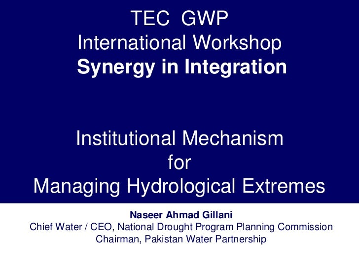 TEC GWP         International Workshop         Synergy in Integration   Institutional Mechanism               forManaging ...
