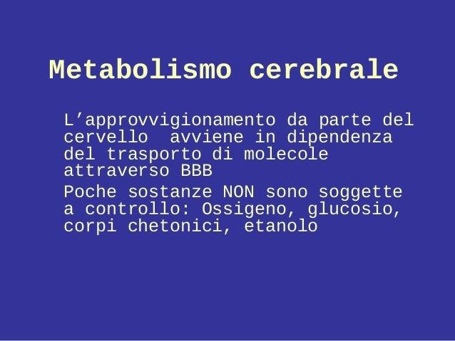Metabolismo cerebrale L'approvvigionamento da parte del cervello avviene in dipendenza del trasporto di molecole attravers...