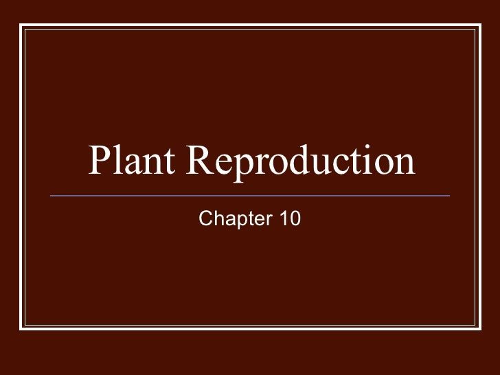 Chapter 10-plant reproduction