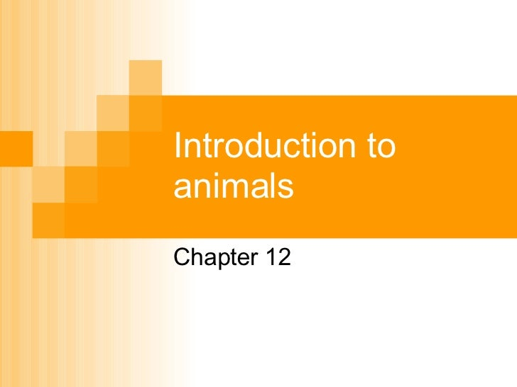 Chapter 12-Intro to animals