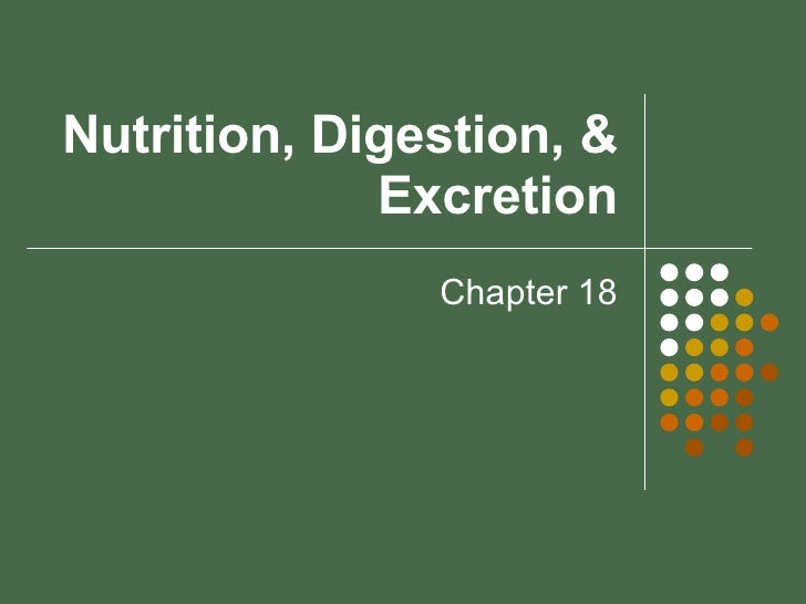 Nutrition, Digestion, & Excretion Chapter 18