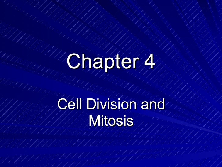 Chapter 4-cell division, mitosis, DNA, protein production