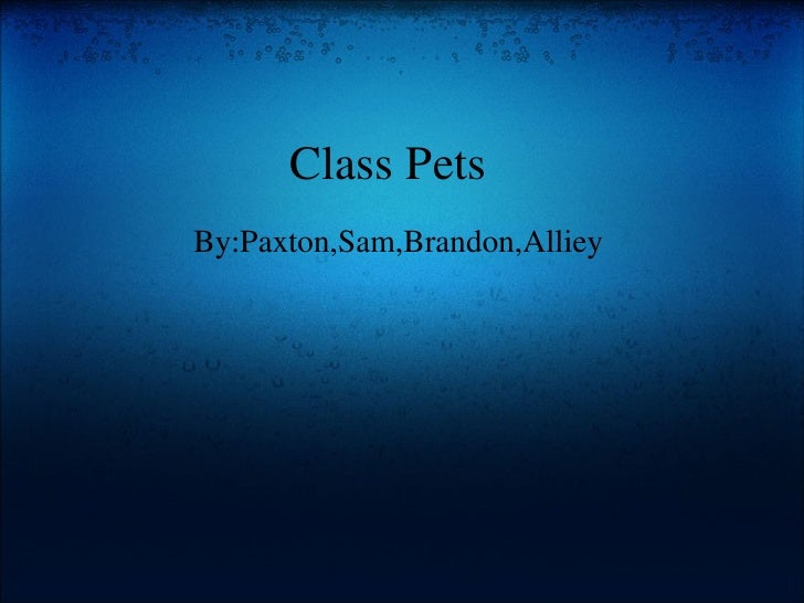Class Pets   By:Paxton,Sam,Brandon,Alliey