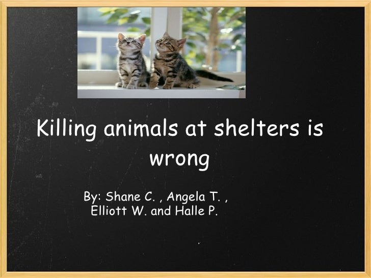 Killing animals at shelters is wrong   By: Shane C. , Angela T. ,    Elliott W. and Halle P.                              ...