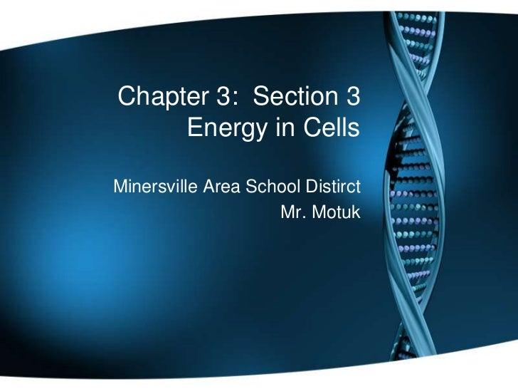 Chapter 3: Section 3     Energy in CellsMinersville Area School Distirct                    Mr. Motuk