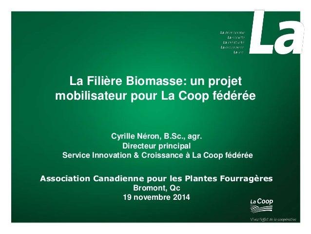 La Filière Biomasse: un projet  mobilisateur pour La Coop fédérée  Cyrille Néron, B.Sc., agr.  Directeur principal  Servic...