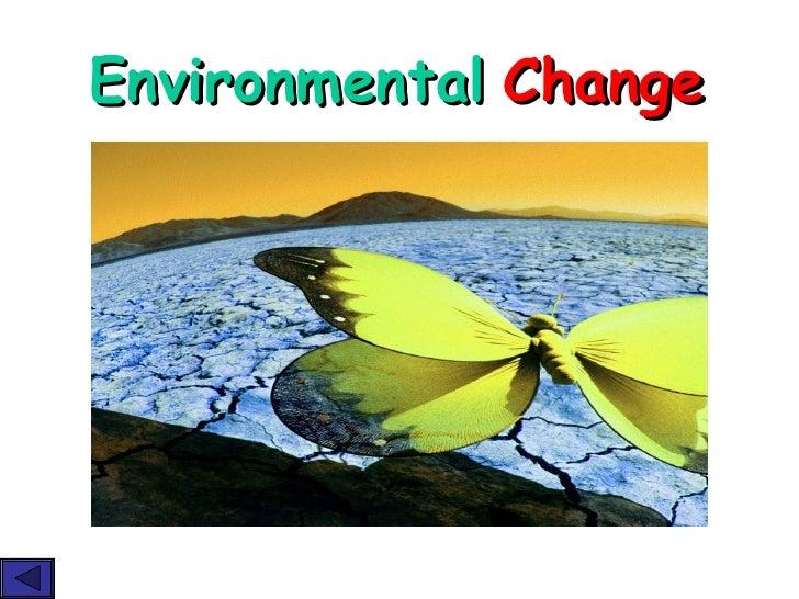 7yr Day8 Enviromental Change