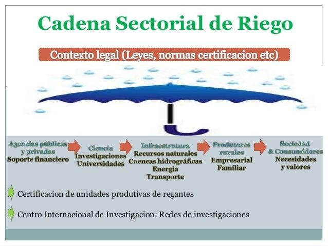 Cadena Sectorial de Riego  Certificacion de unidades produtivas de regantes  Centro Internacional de Investigacion: Redes ...