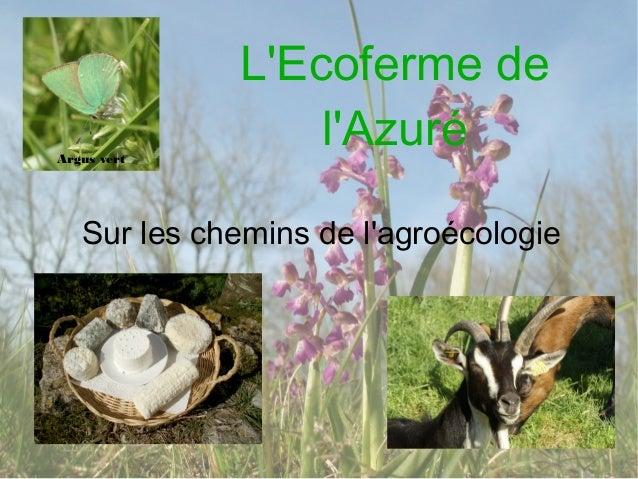 Elevage, vente directe et circuit court dans le respect de la biodiversité - Clarisse Marteau
