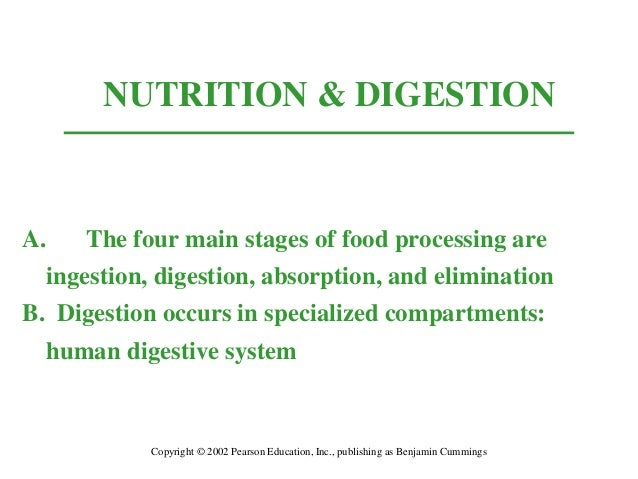 NUTRITION & DIGESTION  A. The four main stages of food processing are ingestion, digestion, absorption, and elimination B....