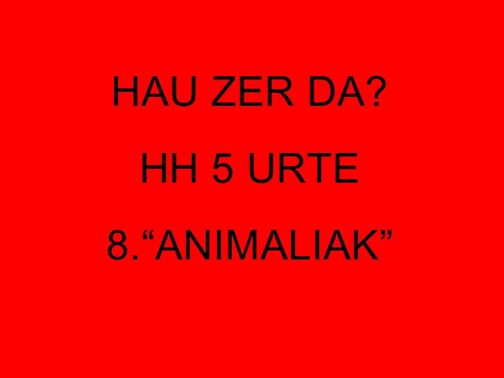 """HAU ZER DA? HH 5 URTE 8.""""ANIMALIAK"""""""