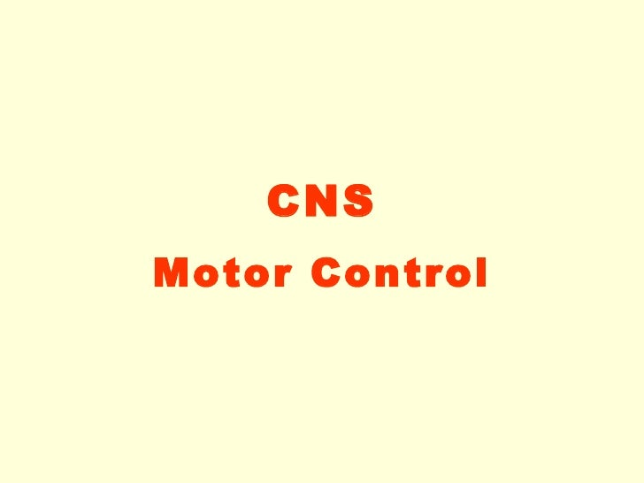 8. motor control-08-09