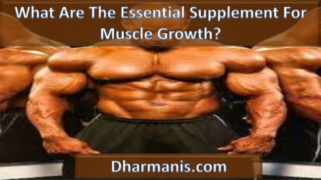 What Are The Essential Supplement For Muscle Growth?