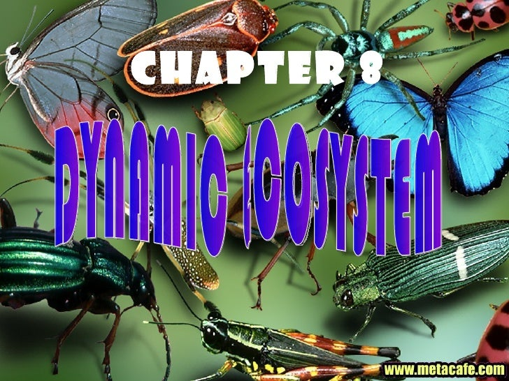 8[1].1   biotic & abiotic components