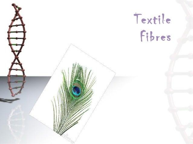81177264 textile-fibres