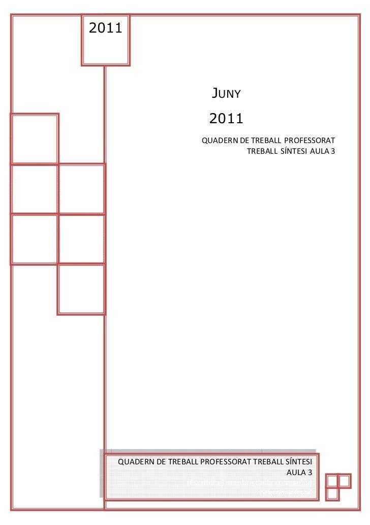 Copia de Quadern de teball TS1 Professorat 3