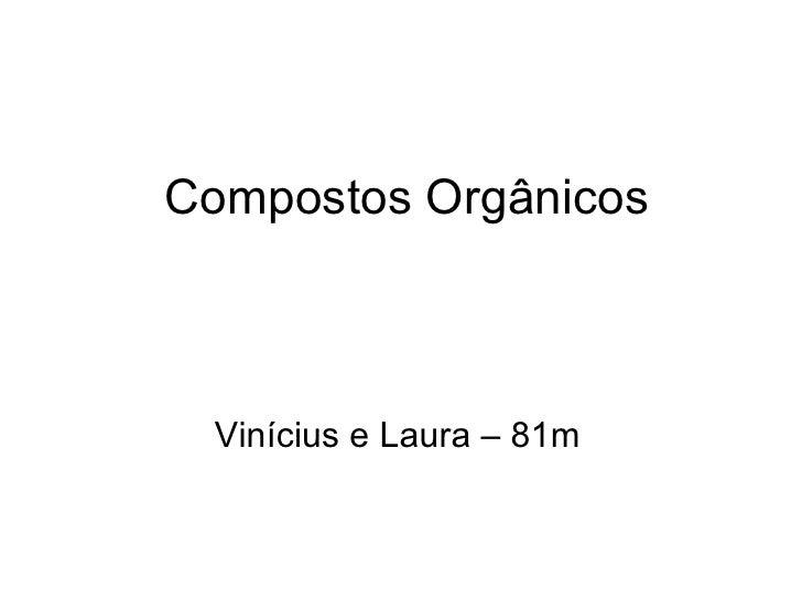Compostos Orgânicos Vinícius e Laura – 81m