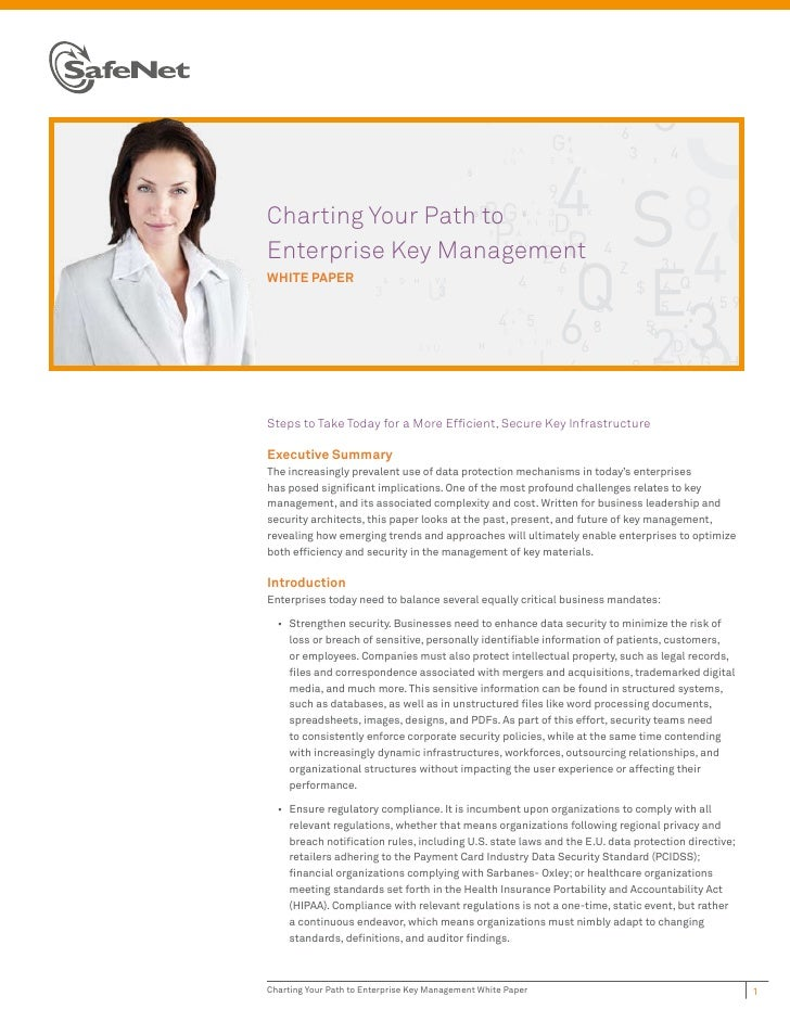 Charting Your Path toEnterprise Key ManagementWHITE PAPERSteps to Take Today for a More Efficient, Secure Key Infrastructu...