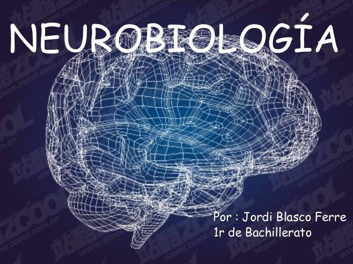 NEUROBIOLOGÍA <ul><li>Por : Jordi Blasco Ferre </li></ul><ul><li>1r de Bachillerato </li></ul>