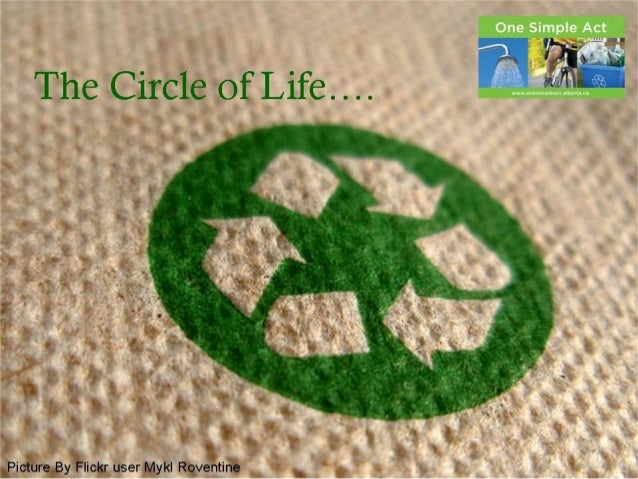 The Circle of Life…. Picture By Flickr user Mykl Roventine The Circle of Life…. Picture By Flickr user Mykl Roventine