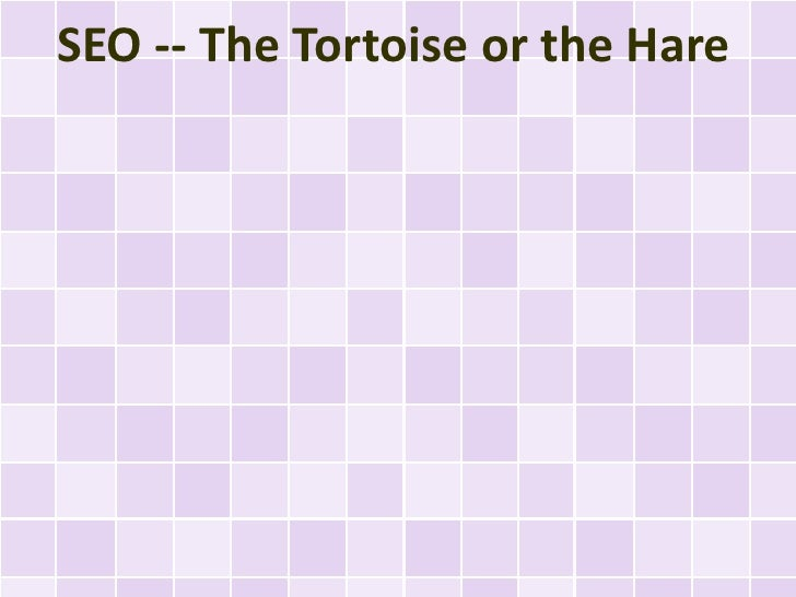 SEO -- The Tortoise or the Hare