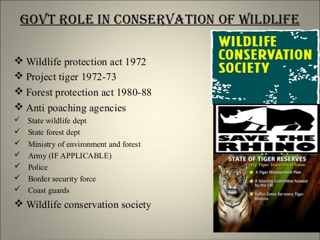 wild life conservation in hindi Protection and conservation of forests and wildlife are essential to maintain the earth's health and free sample essay on forest and wildlife conservation.