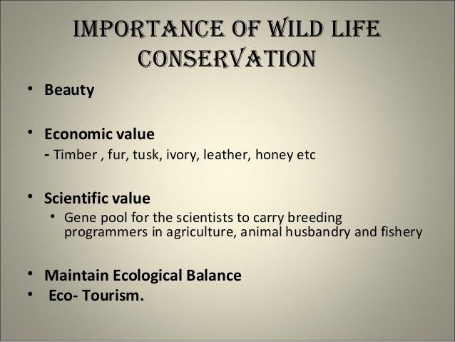 essay on importance of wildlife conservation