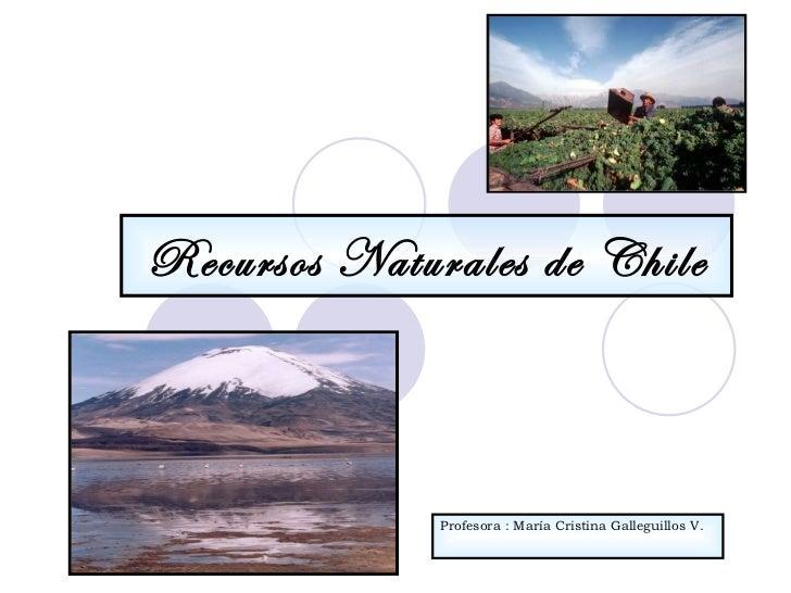 Recursos Naturales de Chile Profesora : María Cristina Galleguillos V.