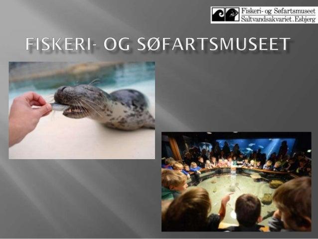 89 Lasse Fast Jensen, Fiskeri  og søfartsmuseet 2013