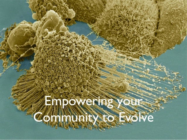 Empowering your Community to Evolve