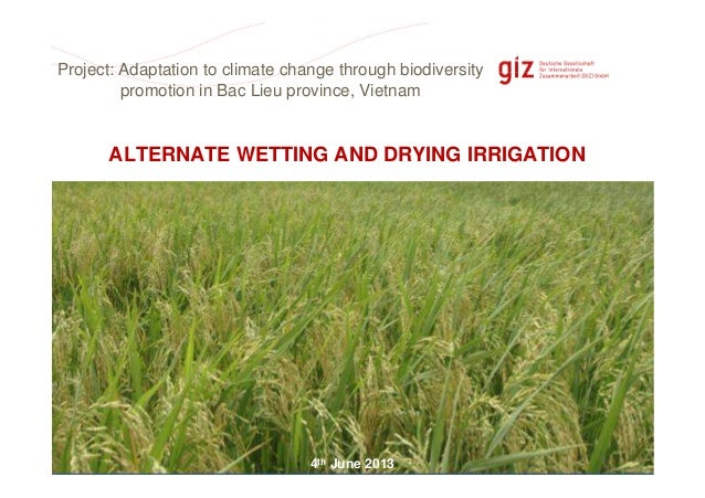 Page 1ALTERNATE WETTING AND DRYING IRRIGATION4th June 2013Project: Adaptation to climate change through biodiversitypromot...