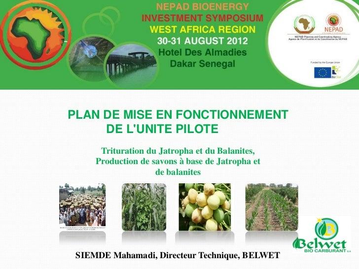 PLAN DE MISE EN FONCTIONNEMENT     DE LUNITE PILOTE      Trituration du Jatropha et du Balanites,     Production de savons...