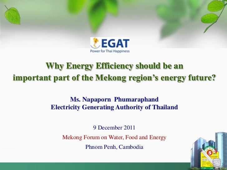 Why Energy Efficiency should be animportant part of the Mekong region's energy future?                Ms. Napaporn Phumara...